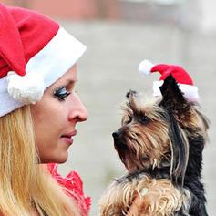 Kerstmis vrolijk kerstfeest de kerstman Doek Kerst hoeden